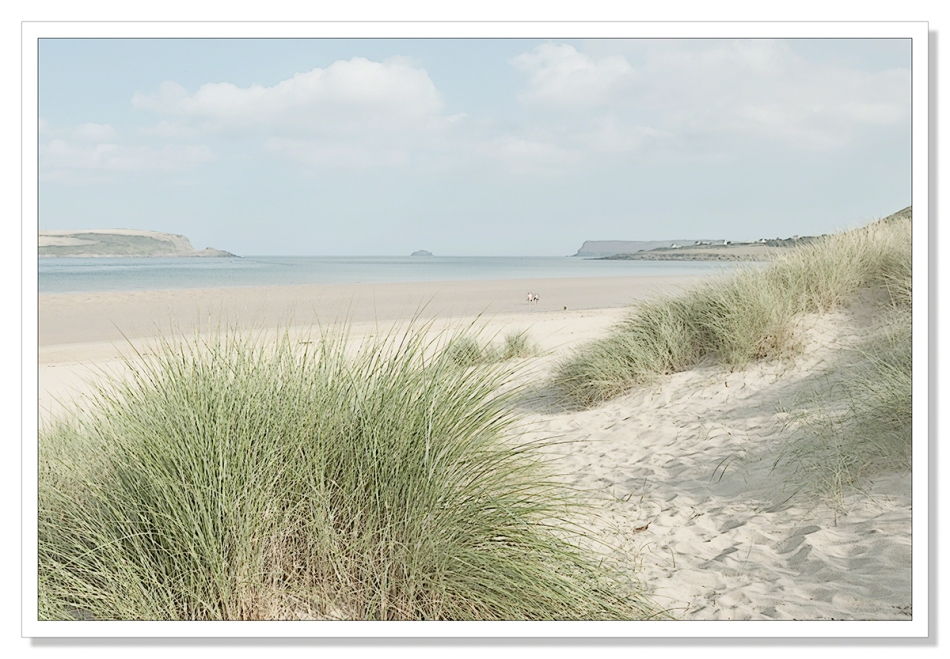 Camel Estuary Illustration