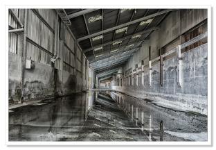 Reflection, Par Harbour